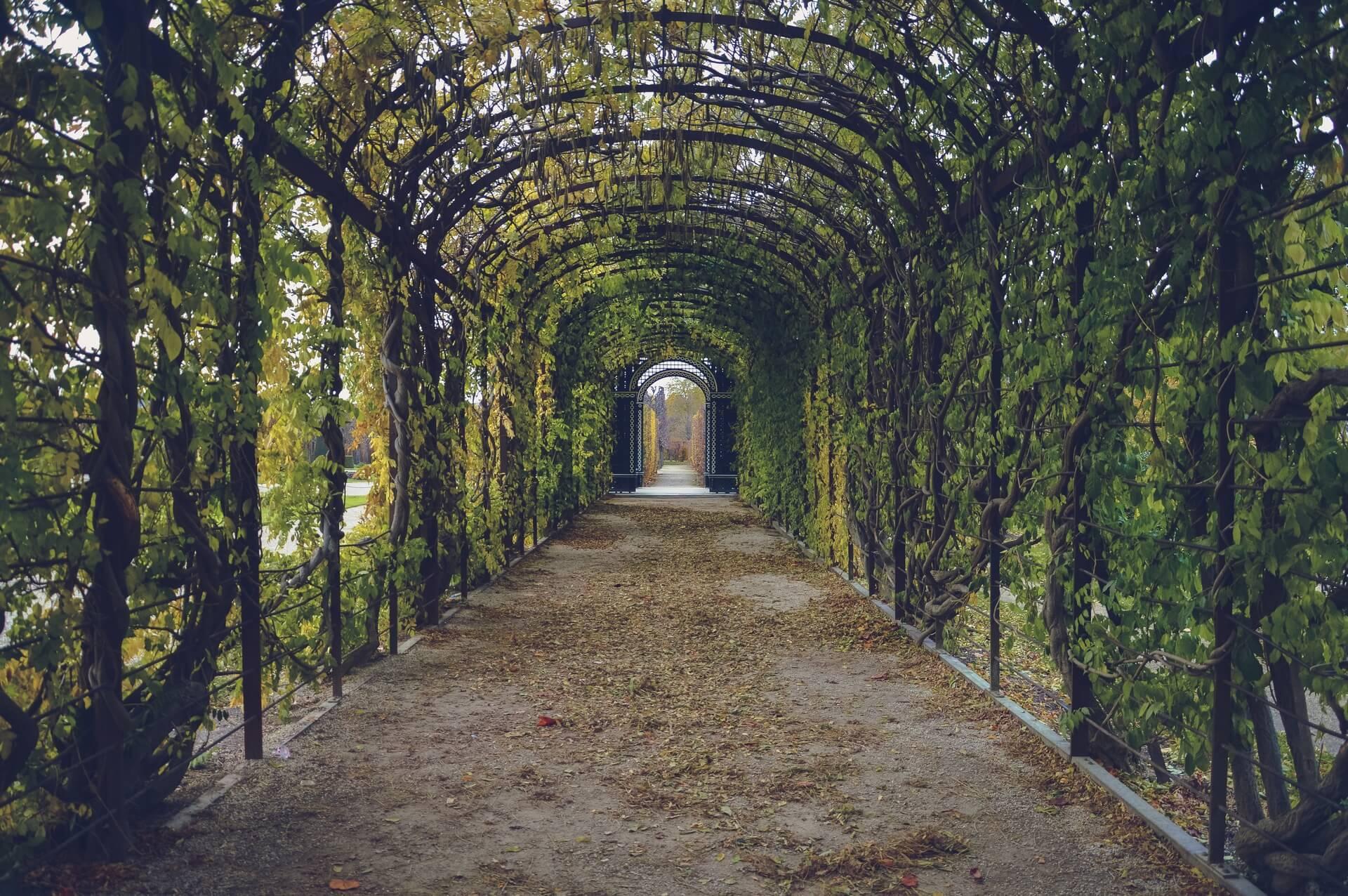 jardin projet paysagiste